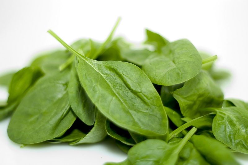 Spinach prevent breast cancer